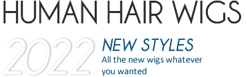 Humain Hair Wigs New Styles