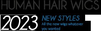Humain Hair Wigs New Styles